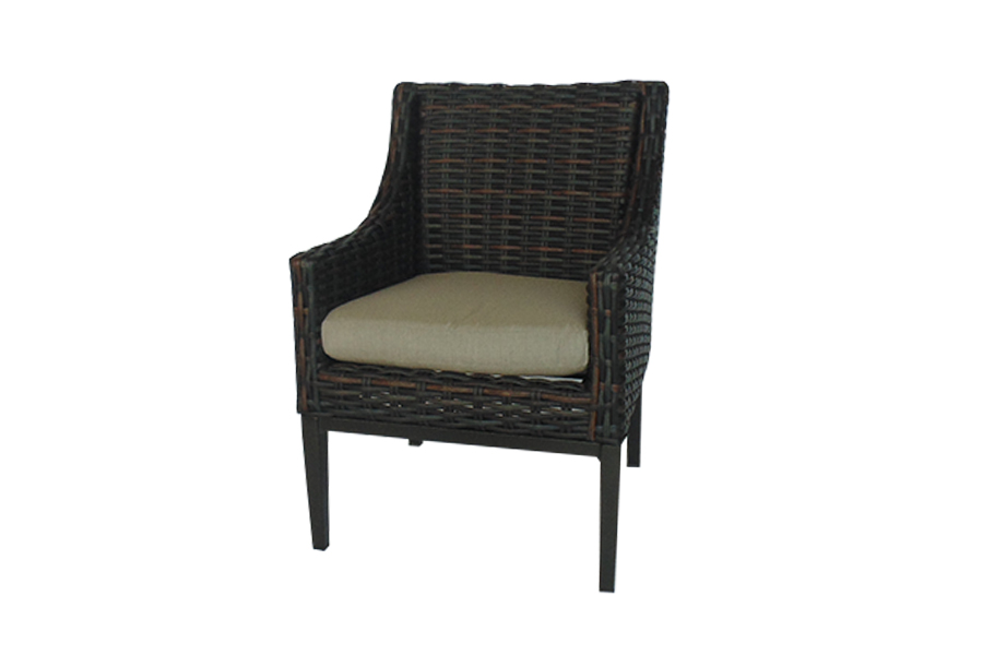 West Lake Brown Dining Chair