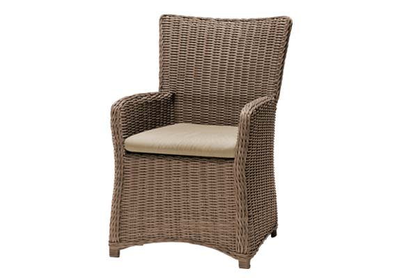 Amola Carver Dining Chair