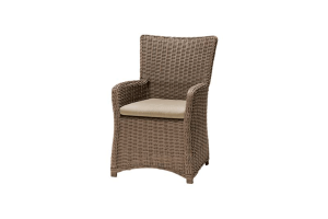Amola Dining Chair