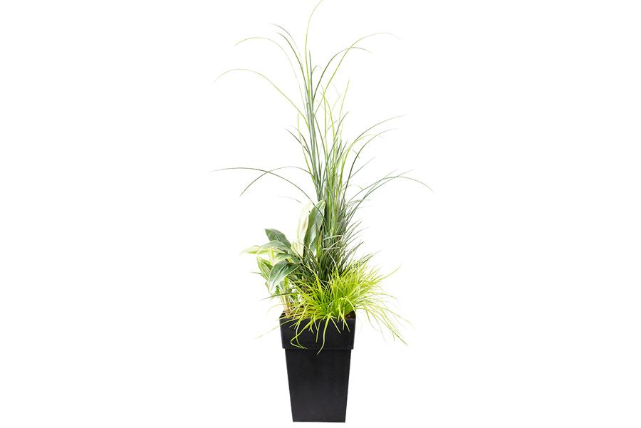 48″ Outdoor Planter Assorted Fern