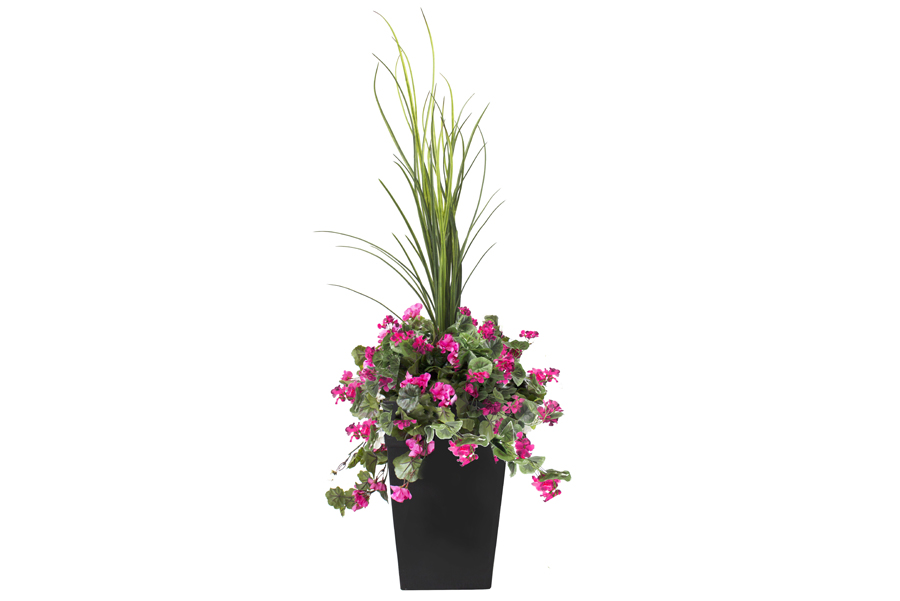 Outdoor Planter Bougainvillier Rose Pink
