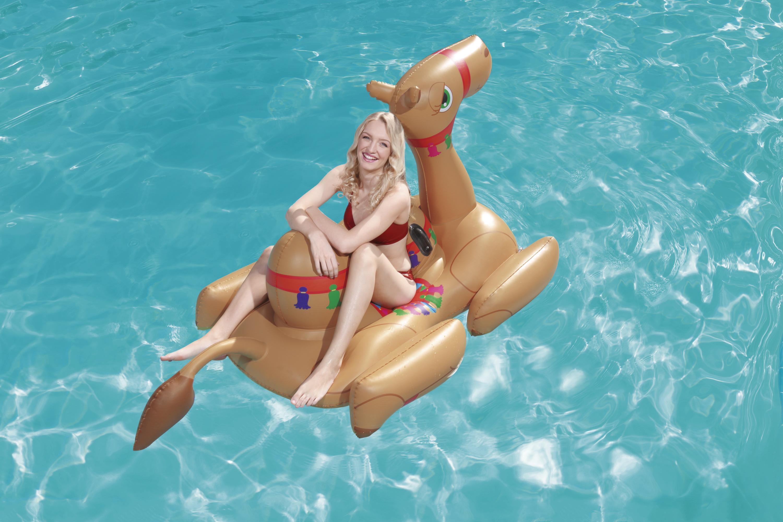 Camel Pool Float