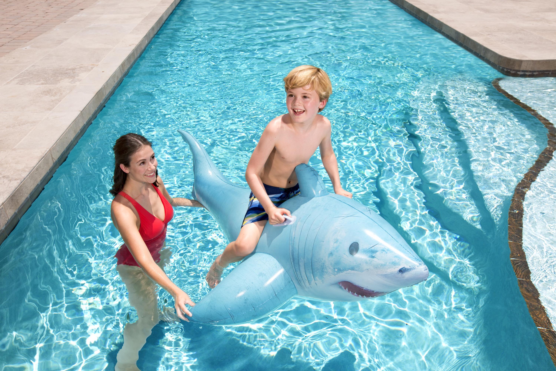 Realistic Shark Ride-On
