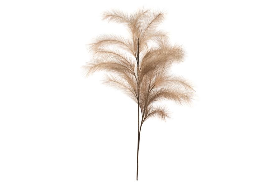 Spray Tan Feather