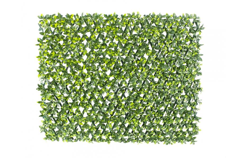 Privacy Screen Lattice Green