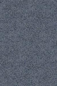 Grey Bonair